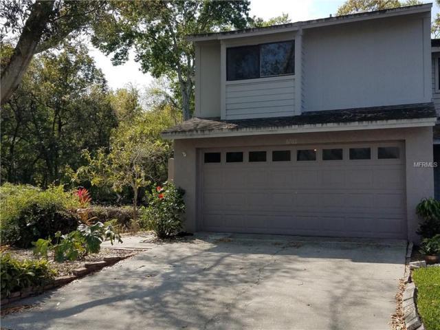 8702 Jasmine Pond Drive, Tampa, FL 33614 (MLS #T3160706) :: Lovitch Realty Group, LLC