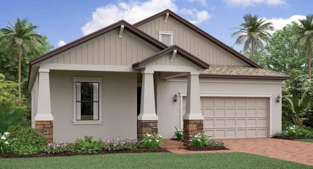 13326 Wildflower Meadow Drive, Riverview, FL 33579 (MLS #T3160714) :: The Light Team