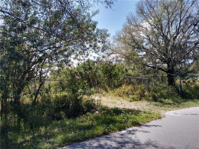 5301 Bishop Road, Wimauma, FL 33598 (MLS #T3160829) :: The Duncan Duo Team