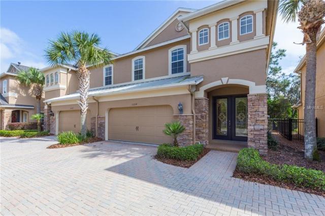 11114 Roseate Dr, Tampa, FL 33626 (MLS #T3160856) :: Cartwright Realty