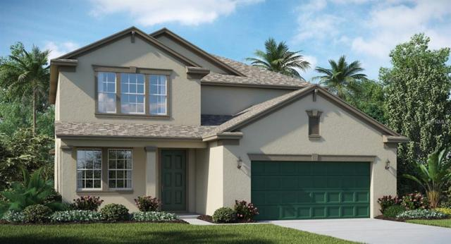 9824 Ivory Drive, Ruskin, FL 33573 (MLS #T3160927) :: The Duncan Duo Team