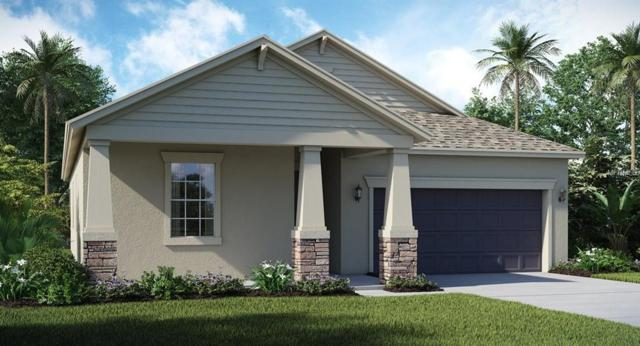 9850 Sage Creek Drive, Ruskin, FL 33573 (MLS #T3160933) :: The Duncan Duo Team