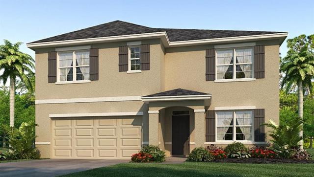2616 Garden Plum Place, Odessa, FL 33556 (MLS #T3160941) :: The Duncan Duo Team