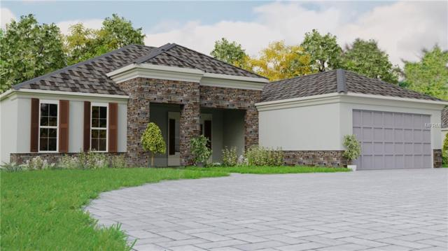 Lot E Frazee Hill Road, Dade City, FL 33523 (MLS #T3161001) :: The Duncan Duo Team