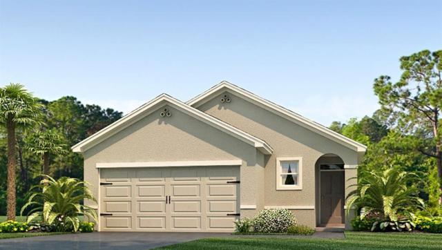 11112 Leland Groves Drive, Riverview, FL 33579 (MLS #T3161032) :: The Light Team