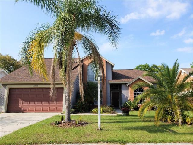 12206 Wildbrook Drive, Riverview, FL 33569 (MLS #T3161033) :: Jeff Borham & Associates at Keller Williams Realty