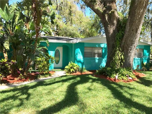 4406 Perch Street, Tampa, FL 33617 (MLS #T3161088) :: Premium Properties Real Estate Services