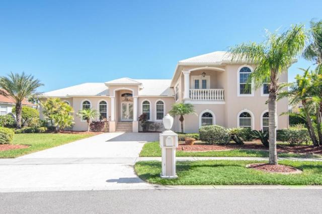 6404 Rubia Circle, Apollo Beach, FL 33572 (MLS #T3161317) :: The Duncan Duo Team