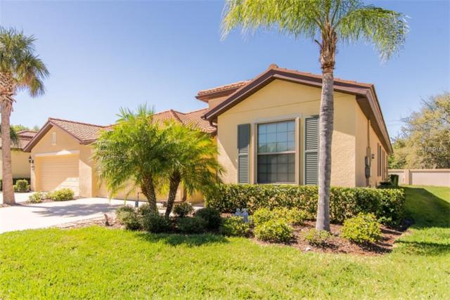 5479 Sunset Falls Drive, Apollo Beach, FL 33572 (MLS #T3161411) :: Mark and Joni Coulter | Better Homes and Gardens