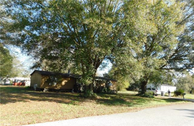 1119 Music Tree Place, Dover, FL 33527 (MLS #T3161434) :: Jeff Borham & Associates at Keller Williams Realty