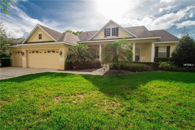 16025 Ternglade Drive, Lithia, FL 33547 (MLS #T3161460) :: The Duncan Duo Team
