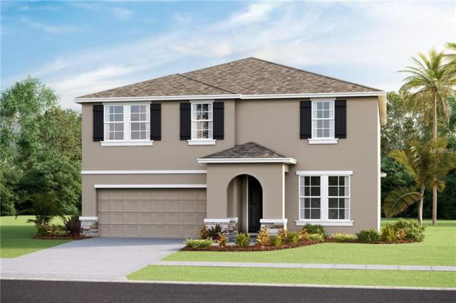 5110 Jackel Chase Drive, Wimauma, FL 33598 (MLS #T3161498) :: The Duncan Duo Team