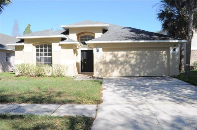 6912 Jamestown Manor Drive, Riverview, FL 33578 (MLS #T3161544) :: Medway Realty