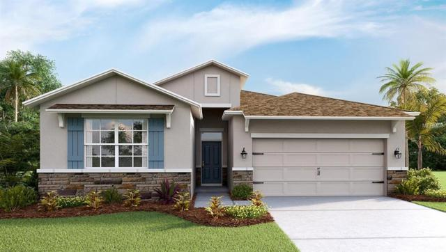 5112 Jackel Chase Drive, Wimauma, FL 33598 (MLS #T3161561) :: The Duncan Duo Team