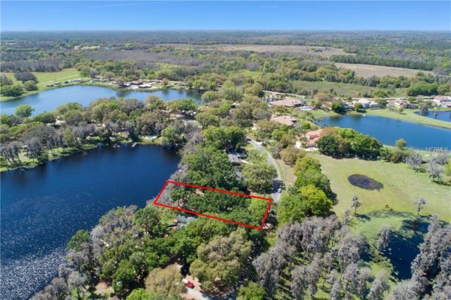 12231 Garden Lake Circle, Odessa, FL 33556 (MLS #T3161594) :: The Duncan Duo Team