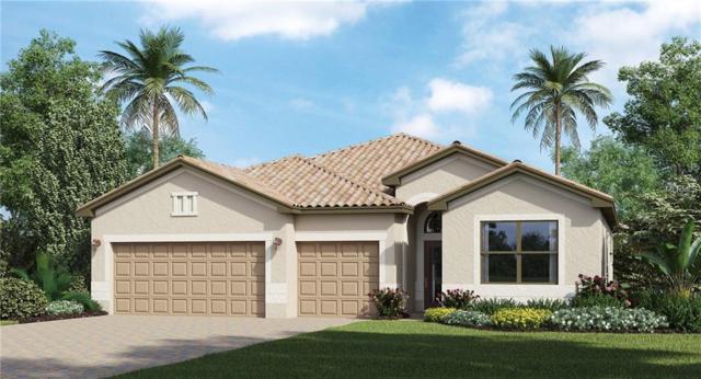 14221 Florida Rosemary Drive, Bradenton, FL 34211 (MLS #T3161823) :: Medway Realty