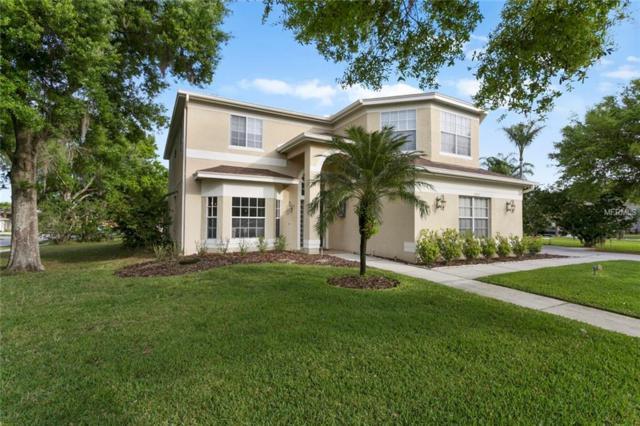 15902 Lahinch Circle, Odessa, FL 33556 (MLS #T3161893) :: Jeff Borham & Associates at Keller Williams Realty