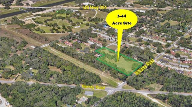 0 Williams Road, Thonotosassa, FL 33592 (MLS #T3161993) :: White Sands Realty Group