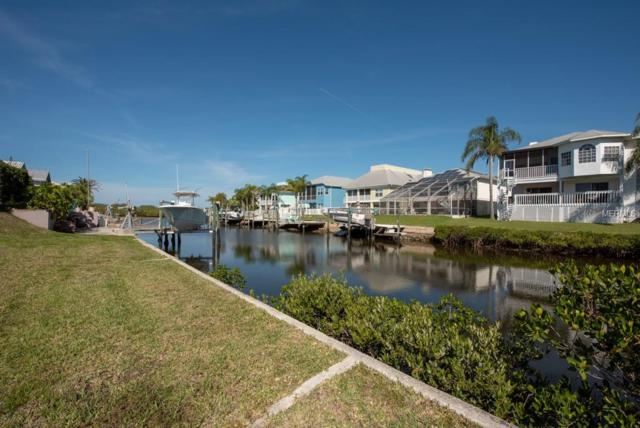 Seaside Drive, New Port Richey, FL 34652 (MLS #T3162034) :: Griffin Group