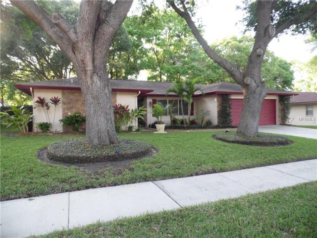 229 Ball Park Avenue, Seffner, FL 33584 (MLS #T3162062) :: Jeff Borham & Associates at Keller Williams Realty