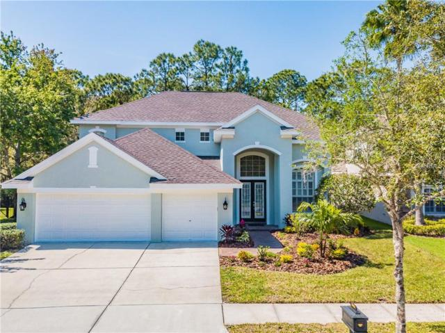 10456 Greendale Drive, Tampa, FL 33626 (MLS #T3162223) :: The Duncan Duo Team
