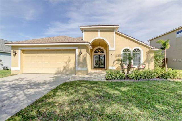 10123 Downey Lane, Tampa, FL 33626 (MLS #T3162229) :: The Duncan Duo Team