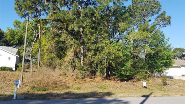 2225 Ring Road, Spring Hill, FL 34609 (MLS #T3162258) :: Dalton Wade Real Estate Group