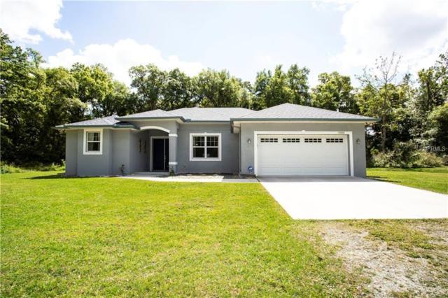 11001 Park Drive, Riverview, FL 33569 (MLS #T3162331) :: KELLER WILLIAMS CLASSIC VI
