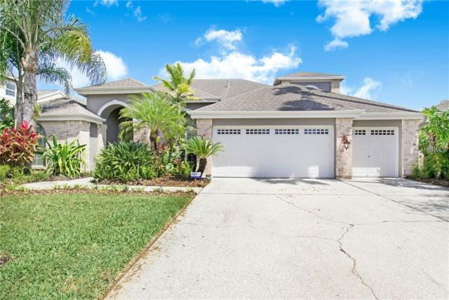 12016 Wandsworth Drive, Tampa, FL 33626 (MLS #T3162408) :: The Duncan Duo Team