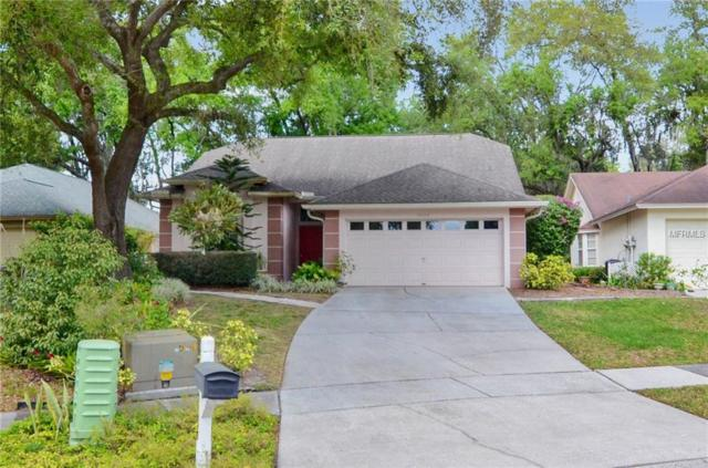 9824 Terrace Trail Lane, Temple Terrace, FL 33637 (MLS #T3162508) :: Team 54