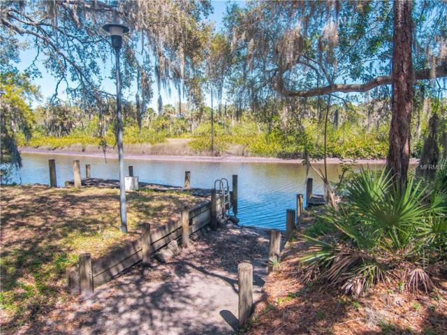 12651 Upper Manatee River Road, Bradenton, FL 34212 (MLS #T3162534) :: Medway Realty