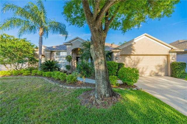 9301 Woodbay Drive, Tampa, FL 33626 (MLS #T3162586) :: The Duncan Duo Team