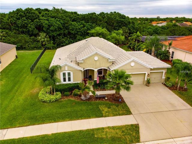 5409 Conch Shell Place, Apollo Beach, FL 33572 (MLS #T3162627) :: Team Bohannon Keller Williams, Tampa Properties