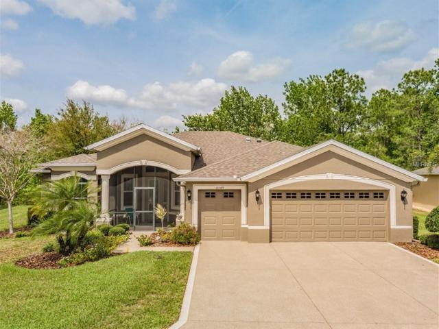 10389 Belmullet Drive, San Antonio, FL 33576 (MLS #T3162654) :: Jeff Borham & Associates at Keller Williams Realty