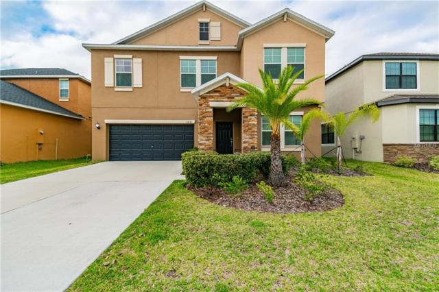 11830 Valhalla Woods Drive, Riverview, FL 33579 (MLS #T3162674) :: Medway Realty