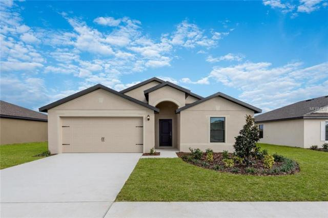 Address Not Published, Dundee, FL 33838 (MLS #T3162711) :: Burwell Real Estate