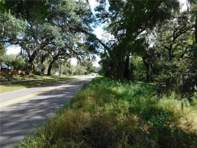 Riverhills Drive, Tampa, FL 33617 (MLS #T3162718) :: The Duncan Duo Team