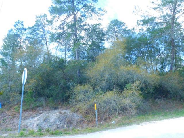 6533 Owl Road, Weeki Wachee, FL 34613 (MLS #T3162734) :: RE/MAX Realtec Group