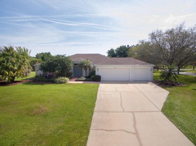 9430 Barrington Oaks Drive, Dover, FL 33527 (MLS #T3162841) :: Jeff Borham & Associates at Keller Williams Realty