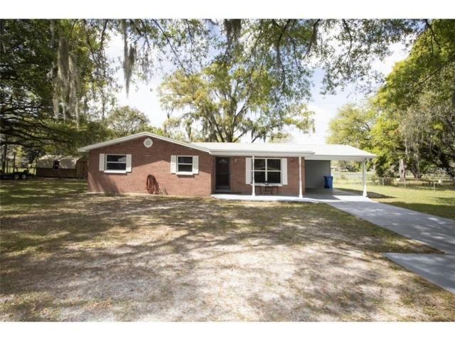 1605 Whitehurst Road, Plant City, FL 33565 (MLS #T3162844) :: Mark and Joni Coulter | Better Homes and Gardens