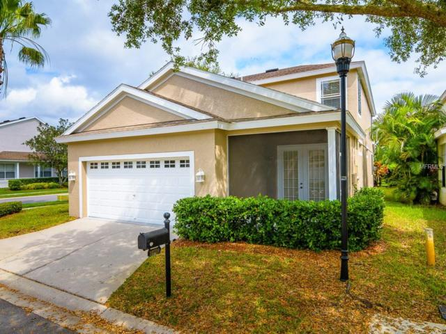 10709 Sierra Vista Place, Tampa, FL 33626 (MLS #T3162895) :: The Duncan Duo Team