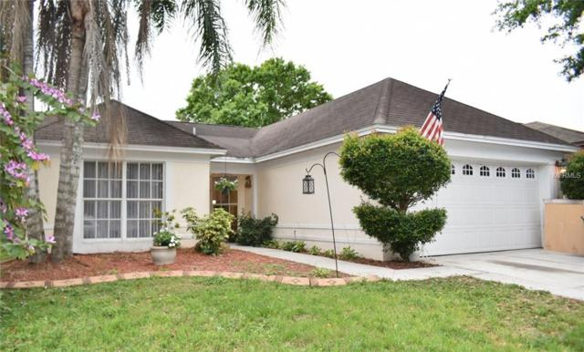 1209 Bloom Hill Avenue, Valrico, FL 33596 (MLS #T3162902) :: Jeff Borham & Associates at Keller Williams Realty