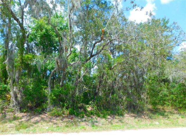 0 Lamont Avenue, New Port Richey, FL 34653 (MLS #T3162913) :: The Duncan Duo Team