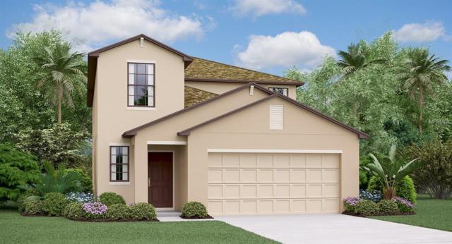 5130 Sable Chime Drive, Wimauma, FL 33598 (MLS #T3162937) :: Jeff Borham & Associates at Keller Williams Realty