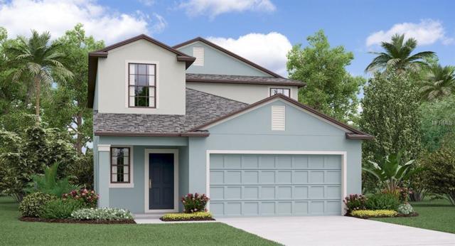 5135 Sable Chime Drive, Wimauma, FL 33598 (MLS #T3162940) :: Jeff Borham & Associates at Keller Williams Realty