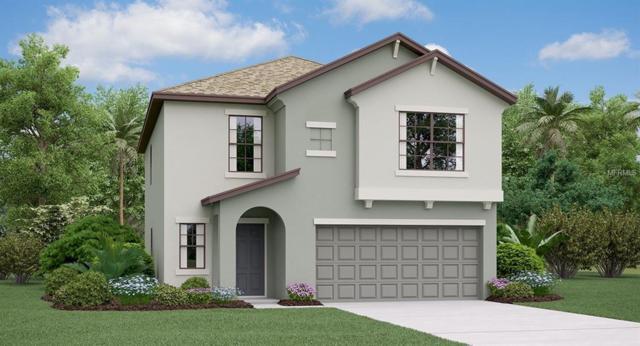 5132 Sable Chime Drive, Wimauma, FL 33598 (MLS #T3162945) :: Jeff Borham & Associates at Keller Williams Realty