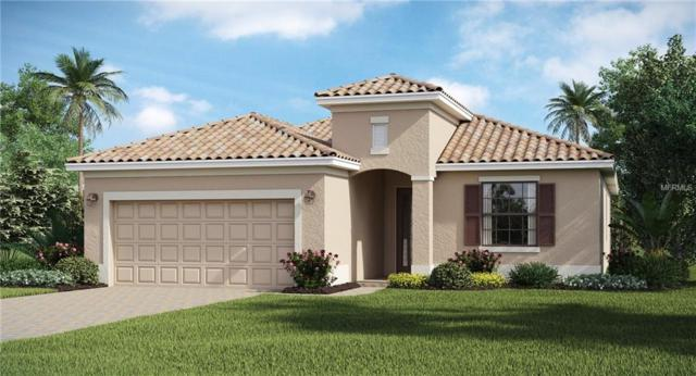 12721 Cinqueterre Drive, Venice, FL 34293 (MLS #T3162995) :: Cartwright Realty