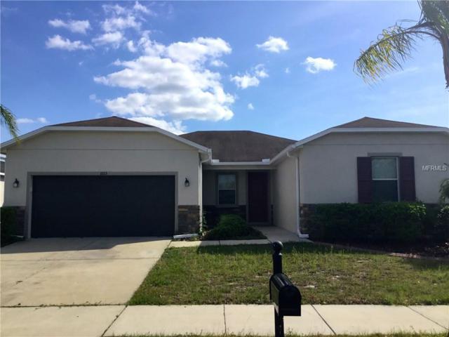 11113 Hartford Fern Drive, Riverview, FL 33569 (MLS #T3162997) :: Team Bohannon Keller Williams, Tampa Properties