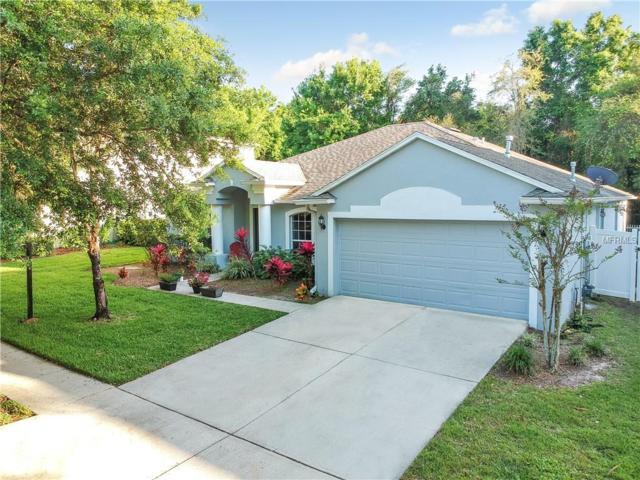 1715 Woodmarker Court, Brandon, FL 33510 (MLS #T3163012) :: KELLER WILLIAMS CLASSIC VI