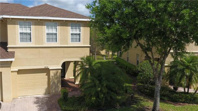 9214 River Rock Lane, Riverview, FL 33578 (MLS #T3163052) :: KELLER WILLIAMS CLASSIC VI